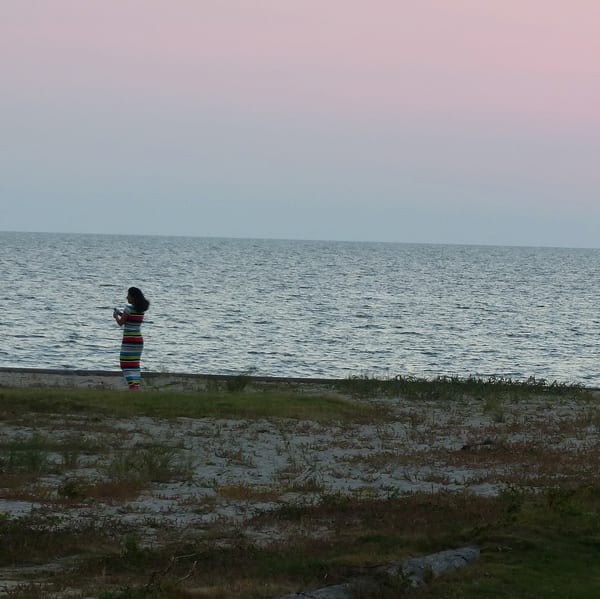 Pamlico Sound Sunset Art | Roost Studios, Inc.