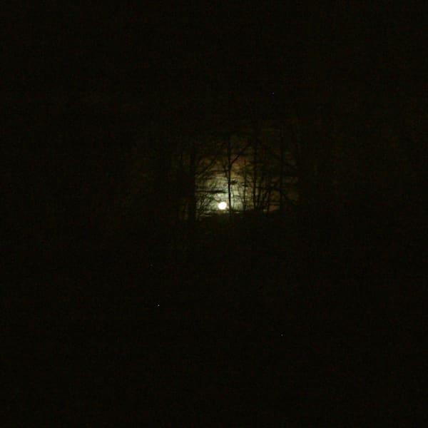 Moonlight Art | Roost Studios, Inc.