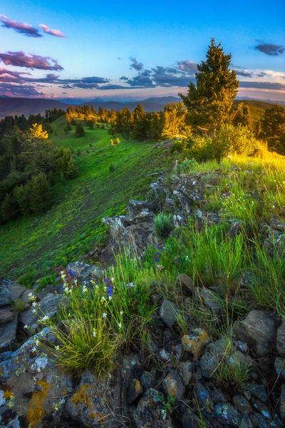 Jackson Creek Montana
