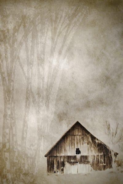 geoscape-winter-shed