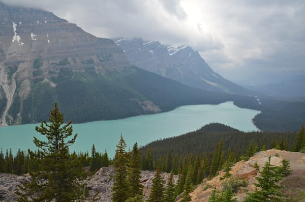 Peyto Lake, Alberta, CAN