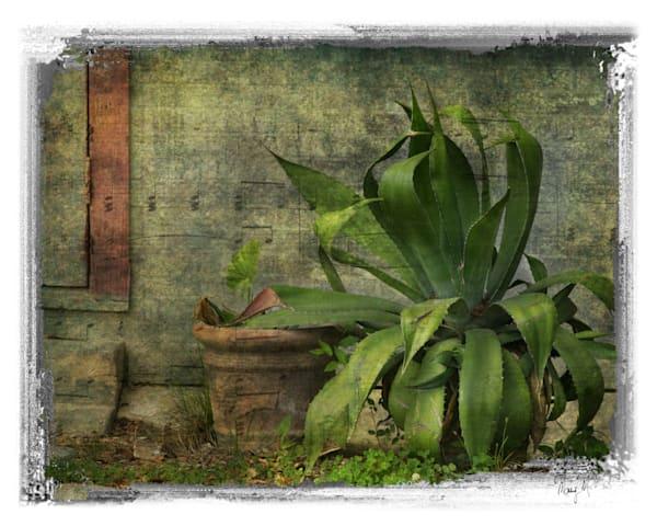 FineArtPhotog-Emerald