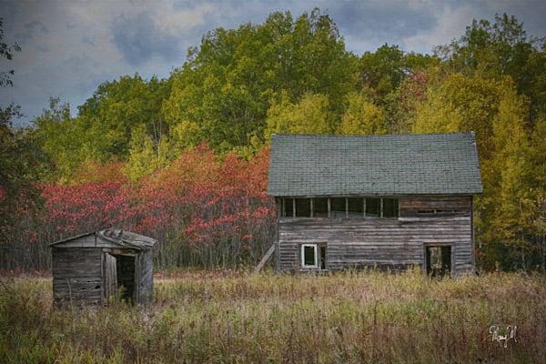 Fine Art Photog Fall In The Woods Art | FortMort Fine Art