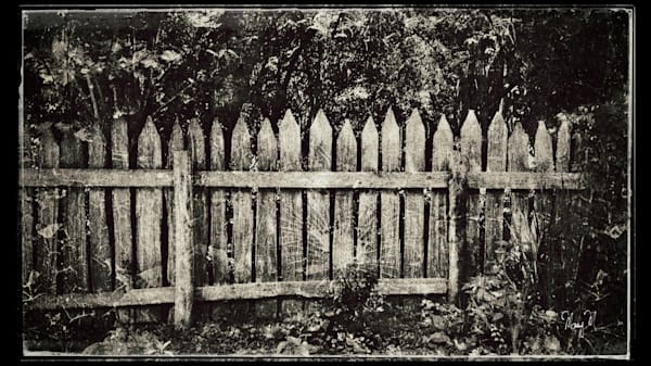 FineArtPhotog-Fenced In