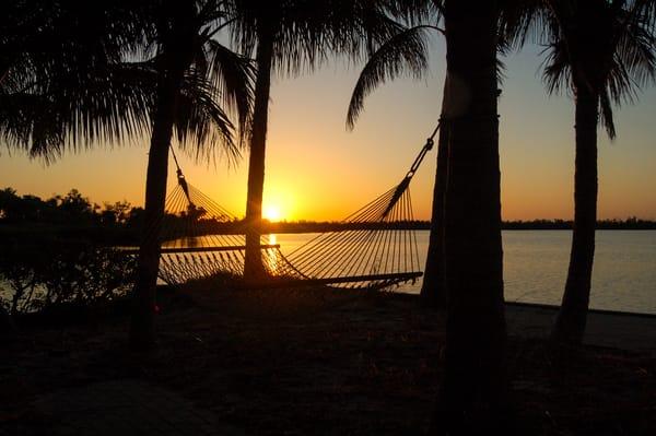 Island Life Sunrise