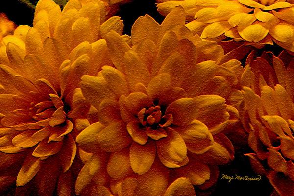 Flowers Golden Bouquet Art | FortMort Fine Art