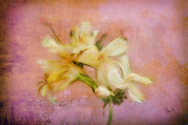 Flowers Island Beauty Art | FortMort Fine Art