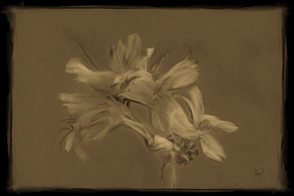 Flowers In The Dark Art | FortMort Fine Art