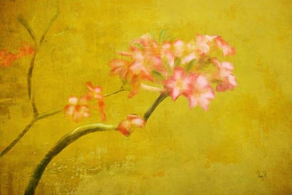 Flowers Precious Art | FortMort Fine Art