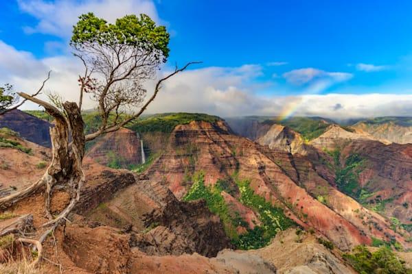 Hawaii Nature Photography | Waipo'o Falls Paradise by Peter Tang