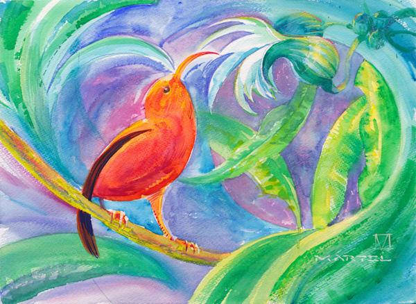 Hawaii Watercolor Art   I'iwi by Mark Martel