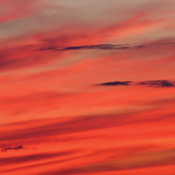 Sunset Sky Art | Roost Studios, Inc.