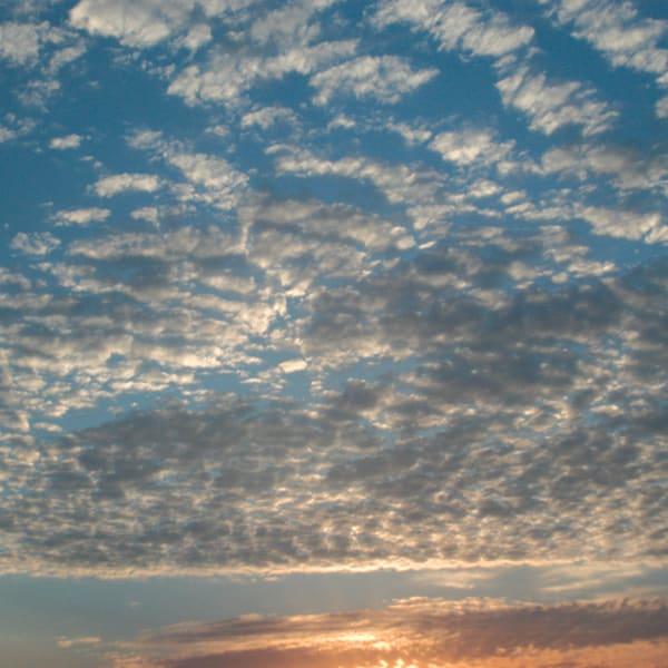 Australia Sunrise Art | Roost Studios, Inc.