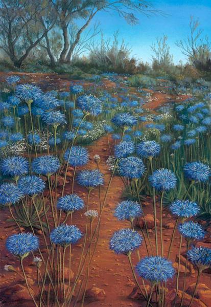 Native Blue Cornflowers
