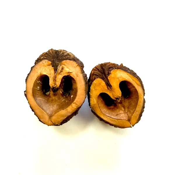 Couple of Nuts