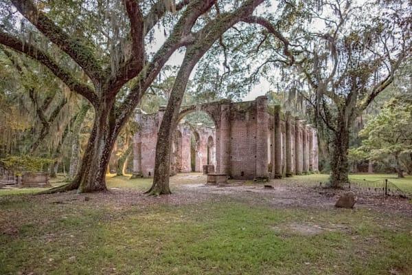 Old Sheldon Church II