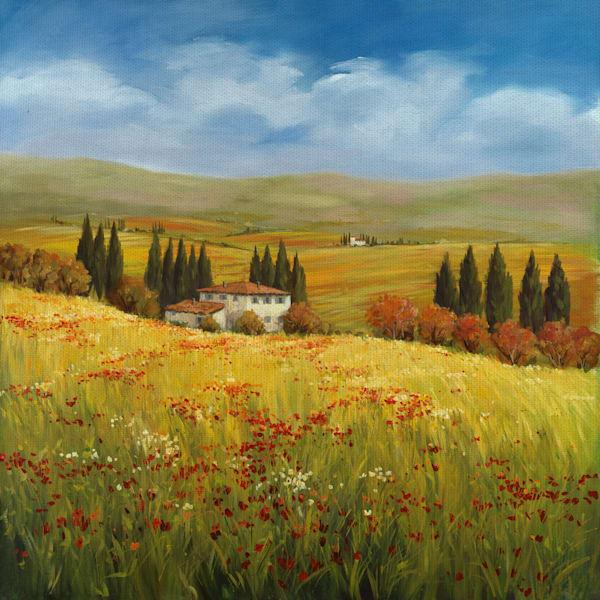 Lo Splendor De La Toscana by artist Tim Howe Wrapped Canvas Art Print