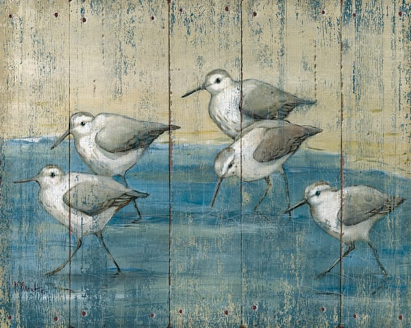 Sandpipers on Wood by artist Paul Brent Wrapped Canvas Art Print