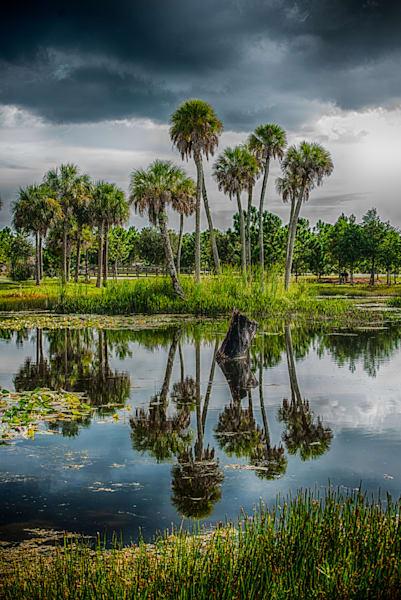 Forgotten Florida Art | Artist David Wilson