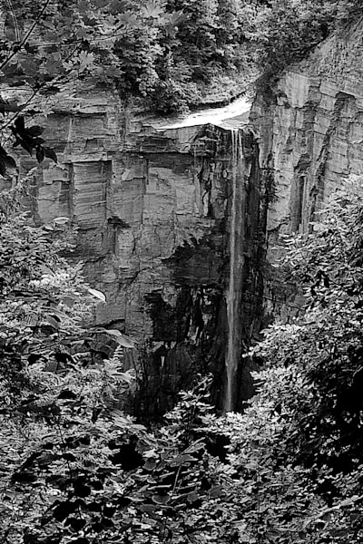 Taughannock Trickle