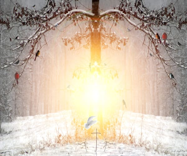 """""""The Tree of Life"""" by Bill Stephens 
