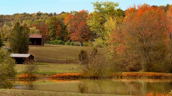 Pennsylvania Reflections