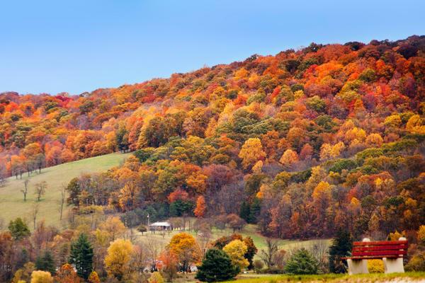 Autumn in Appalachia