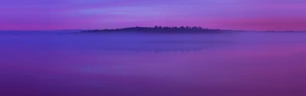Violet Solitude
