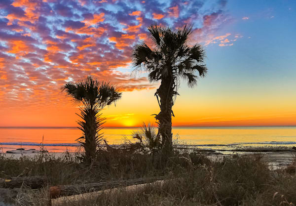 Father And Son Palmetto Sunrise Photography Art | Phil Heim Photography