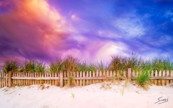 Beach Fence, Cape Cod, Mass.