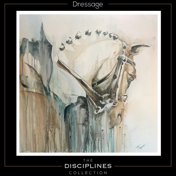 world equestrian games, discipline collection, dressage, equestrian art