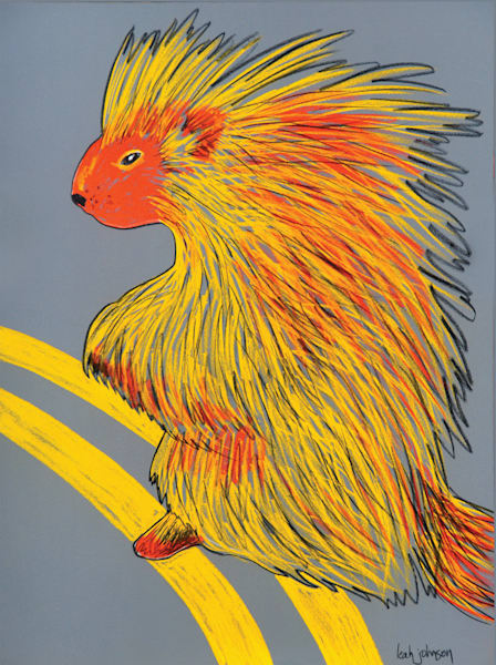 Porcupine Double Yellow Line