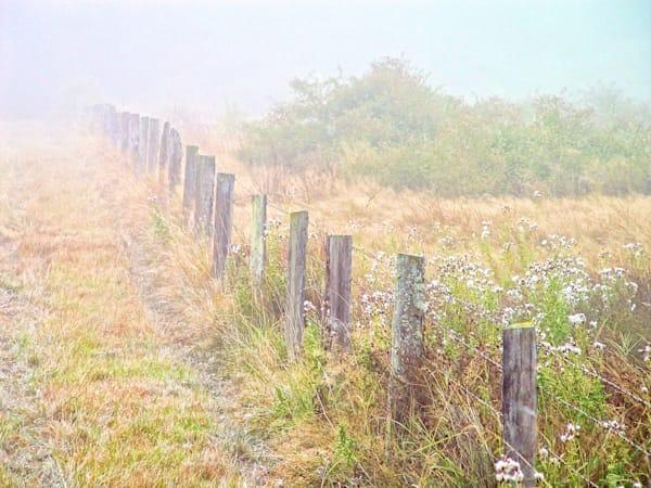 Old Fence Art | Northwest Image