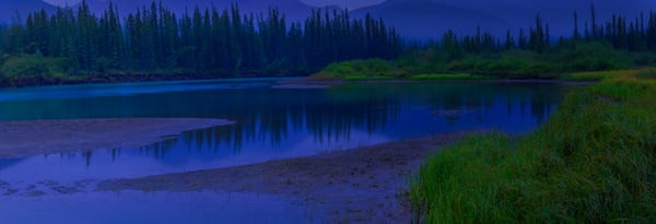 An evening at Beaver Bend on the Bow River  in Banff. Canadian Rockies|Banff National Park|