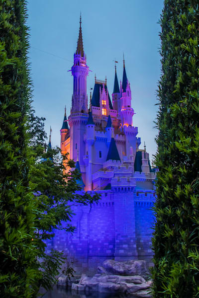 Cinderella's Castle Surrounded - Disney Canvas Art | William Drew