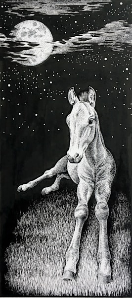 Full Moon Foal - pen and ink drawing