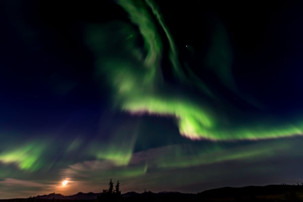Northern lights with full moon Denali Alaska #2