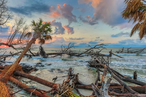 After The Hurricane Photography Art | Phil Heim Photography