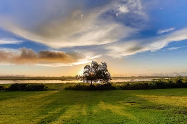 Standing Alone Photography Art | Phil Heim Photography