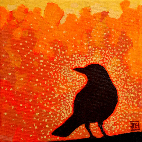 Robin Sunrise, by Jenny Hahn