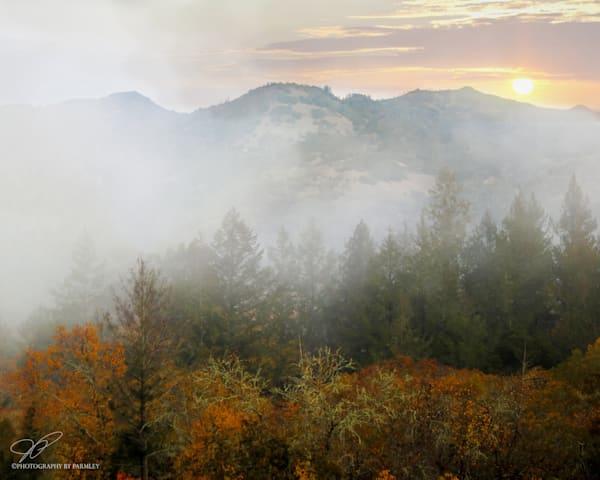 Napa Valley Sunrise