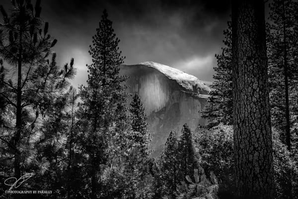 Yosemite Black and White Landscape