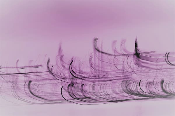 Lilac Waves