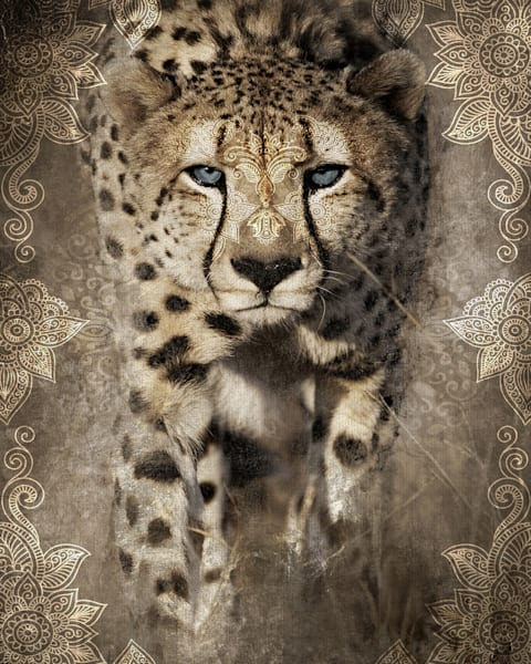 Global Cheetah I by artist Belle Maison Wrapped Canvas Photo Art Print