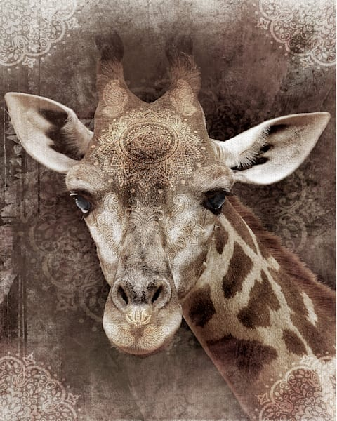 Global Giraffe I by artist Belle Maison Wrapped Canvas Photo Art Print