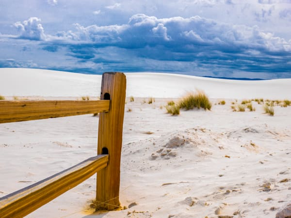 Limitless Life On White Sands | Desert Landscape Photography Print