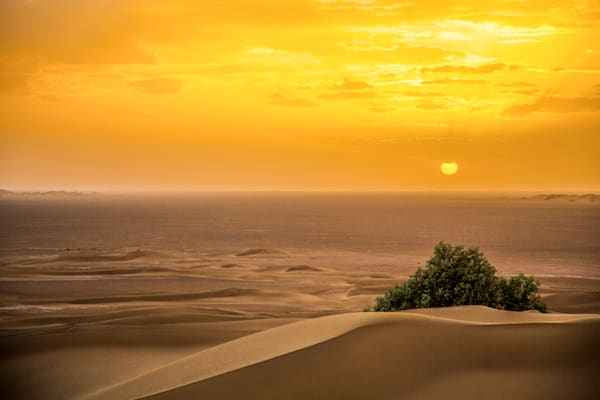 Desert Landscape Photo Prints | Online Art Photography Store