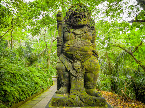 Sacred Monkey Forest | Travel Art Photography Print