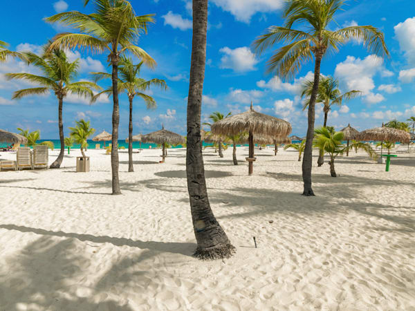 Manchebo Beach Aruba | Tropical Landscape Photography Print