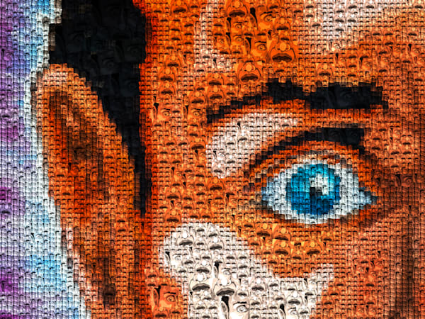 Eye Spy | Photomosaic Photography